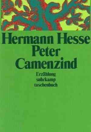 Book Peter Camenzind (Peter Camenzind) in German